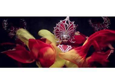 5 Costumi Carnevale per Donna che non ti Aspetti di Vedere in Giro!